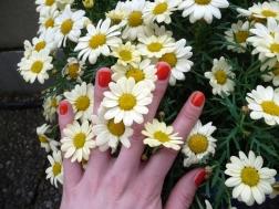 Springtime (9)